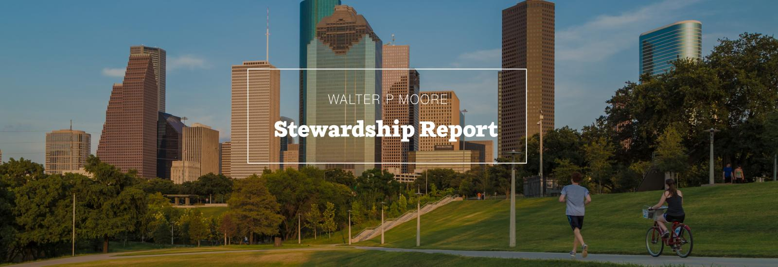Stewardship Report Feature